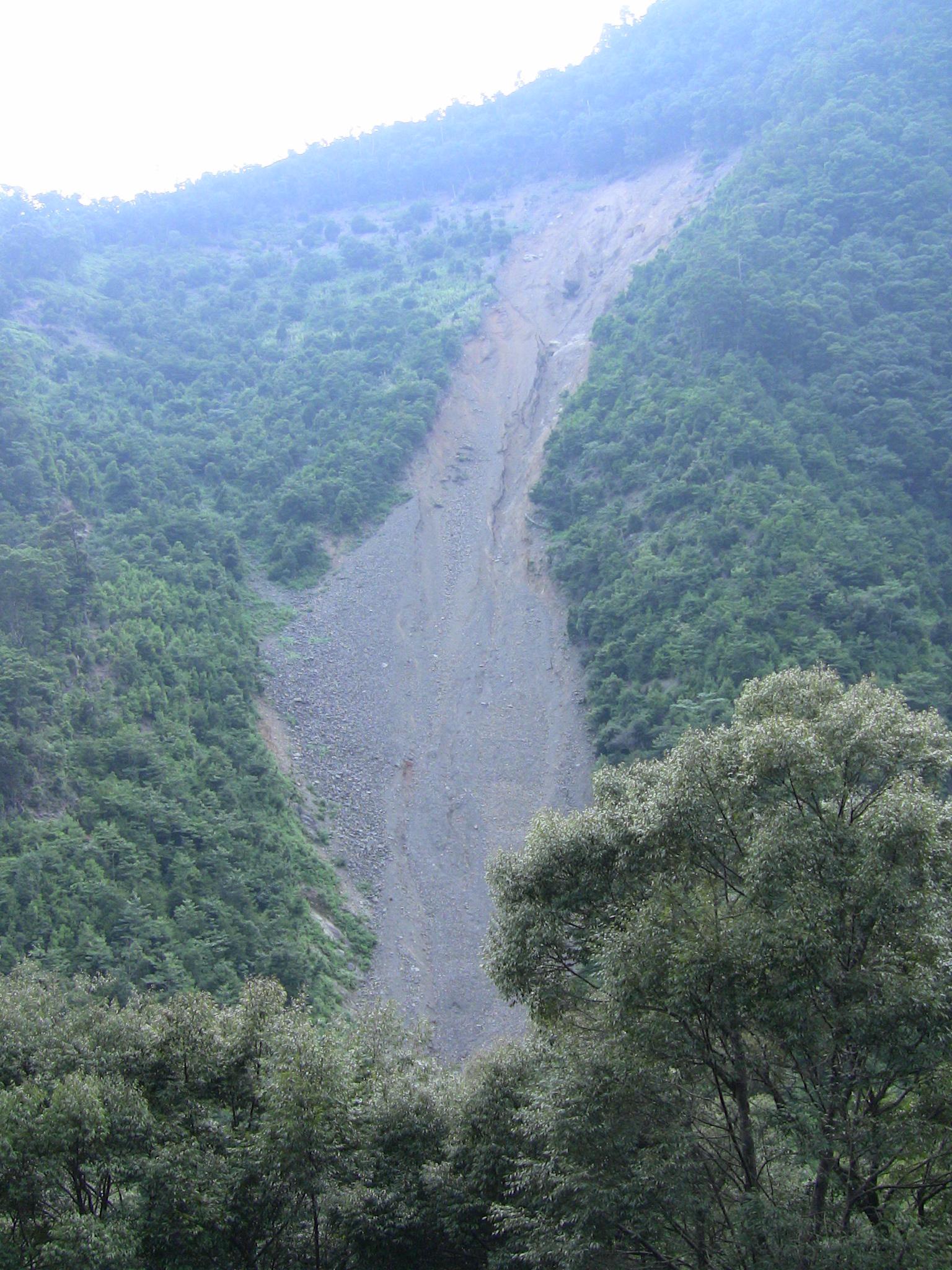 山の現状 (2)